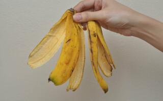 Как улучшить пышный рост растений с помощью банановой кожуры?