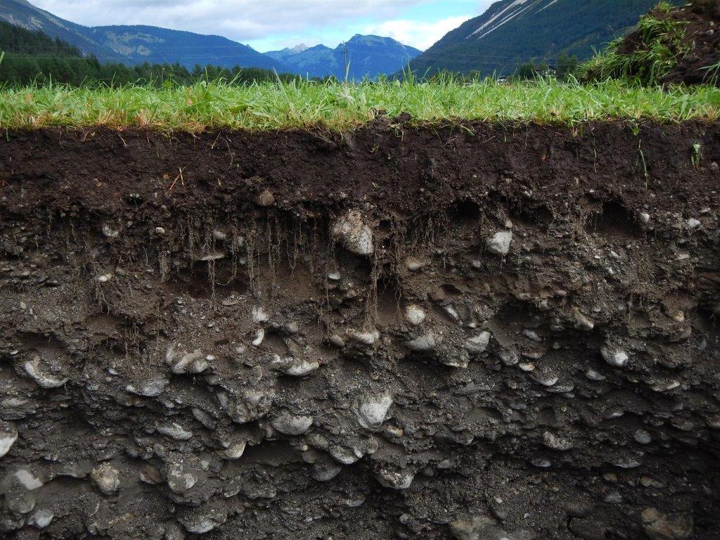 Сад и огород: что следует знать о грунте